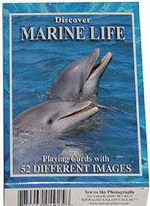 Discover Marine Life set of 52 playing cards + jokers    (gib)